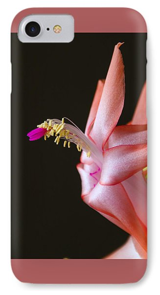 Ready For Flight IPhone Case by Marilyn Carlyle Greiner