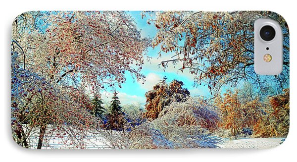 IPhone Case featuring the photograph Realm Of The Ice Queen by Rodney Campbell