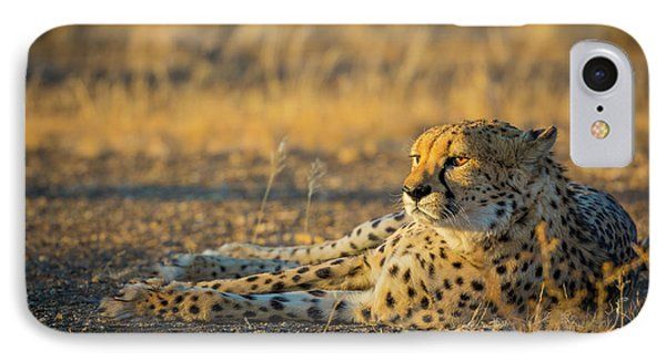 Reclining Cheetah IPhone 7 Case by Inge Johnsson