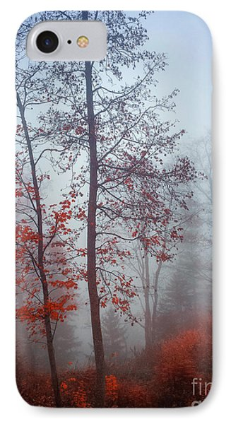 IPhone Case featuring the photograph Red And Blue by Elena Elisseeva