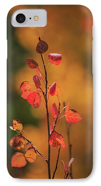 IPhone Case featuring the photograph Red And Gold by David Chandler