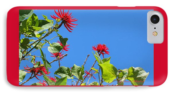 Red And Green San Diego Flowers Phone Case by Doreen Whitelock