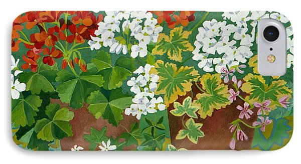 Red And White Geraniums In Pots IPhone Case