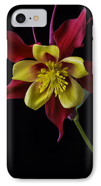 Red And Yellow Columbine Flower IPhone Case