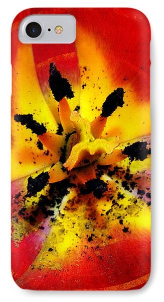 Red And Yellow Flower IPhone Case by Judi Saunders