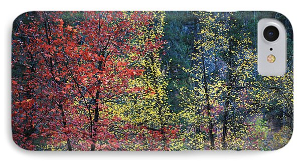 Red And Yellow Leaves Abstract Horizontal Number 1 Phone Case by Heather Kirk