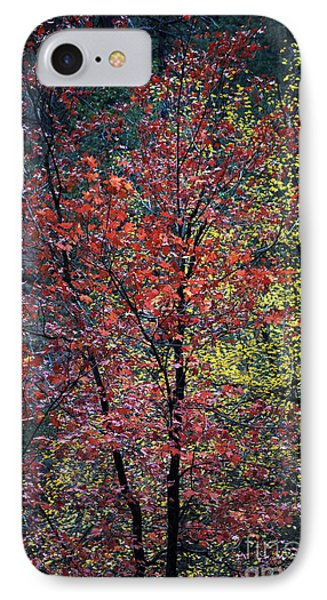 Red And Yellow Leaves Abstract Vertical Number 1 Phone Case by Heather Kirk