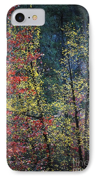 Red And Yellow Leaves Abstract Vertical Number 2 Phone Case by Heather Kirk