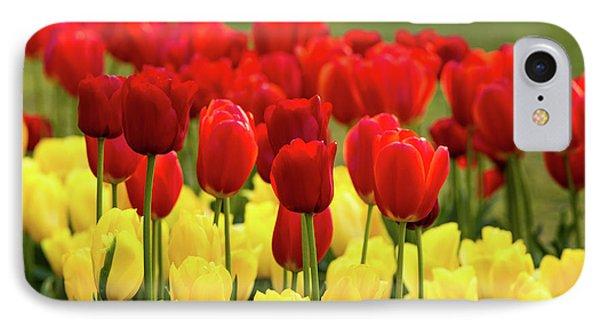 IPhone Case featuring the photograph Red And Yellow Tulips by Mary Jo Allen