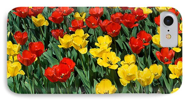 Red And Yellow Tulips  Naperville Illinois IPhone Case by Michael Bessler