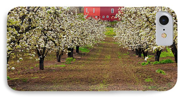 Red Barn Avenue IPhone Case