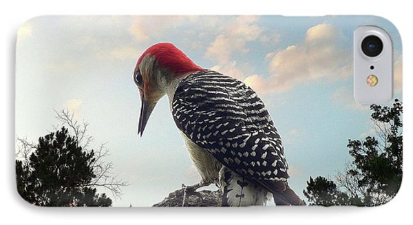 Red-bellied Woodpecker - Tree Top IPhone Case by Al Powell Photography USA