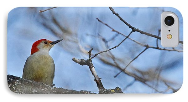 IPhone Case featuring the photograph Red-bellied Woodpecker 1137 by Michael Peychich