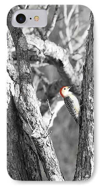 IPhone Case featuring the photograph Red-bellied Woodpecker by Benanne Stiens