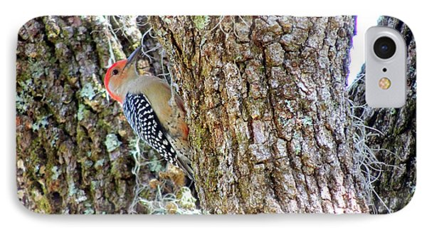 IPhone Case featuring the photograph Red-bellied Woodpecker By Bill Holkham by Bill Holkham