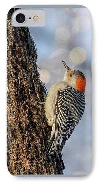 Red-bellied Woodpecker IPhone Case by Irwin Seidman
