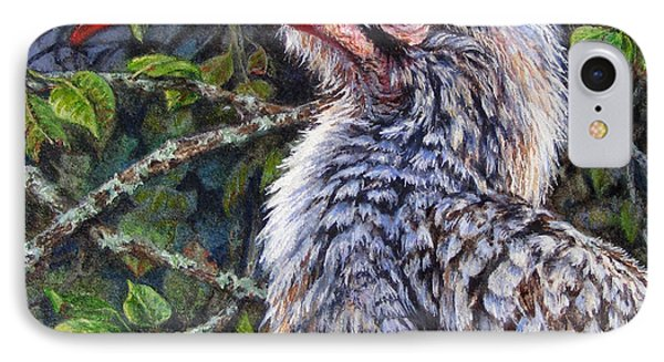 Red Billed Hornbill IPhone Case