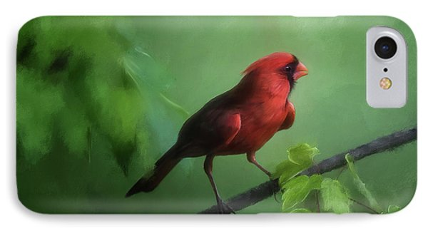 Red Bird On A Hot Day IPhone Case by Lois Bryan