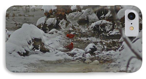 Red Bird Red Bird IPhone Case