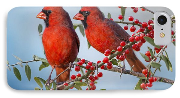 Red Birds In Red Berries IPhone Case