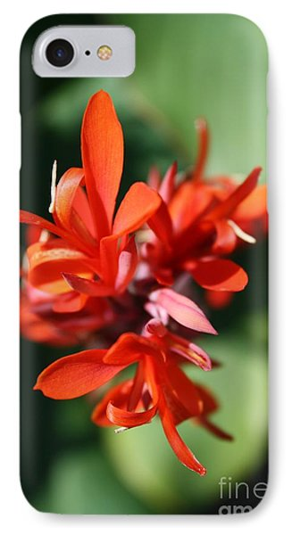 Red Canna Flower Phone Case by John W Smith III