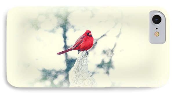 Red Cardinal On Angel Wing IPhone Case by Charline Xia