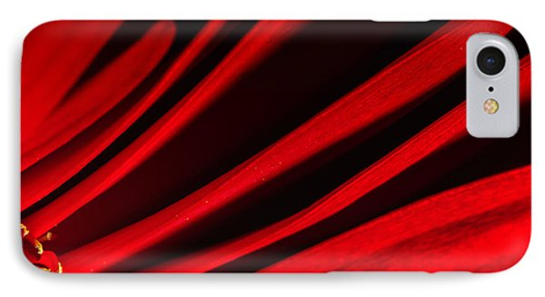 Red Chrysanthemum Flower IPhone Case by John Williams