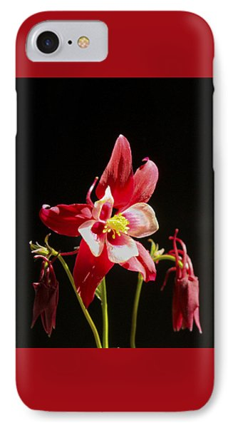 Red Columbine Flower IPhone Case by Christina Lihani