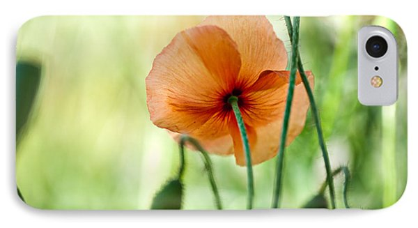 Red Corn Poppy Flowers 02 IPhone Case by Nailia Schwarz