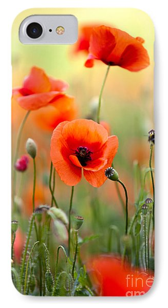 Red Corn Poppy Flowers 06 IPhone Case by Nailia Schwarz
