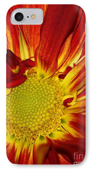 Red Daisy Phone Case by Sabrina L Ryan
