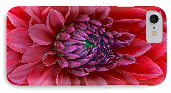 IPhone Case featuring the photograph Red Dalia Up Close by James Steele