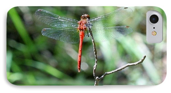 IPhone Case featuring the photograph Red Dragonfly by Karen Silvestri