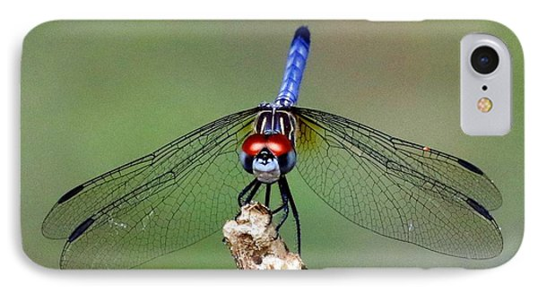 Red Eyed Dragonfly IPhone Case by Myrna Bradshaw