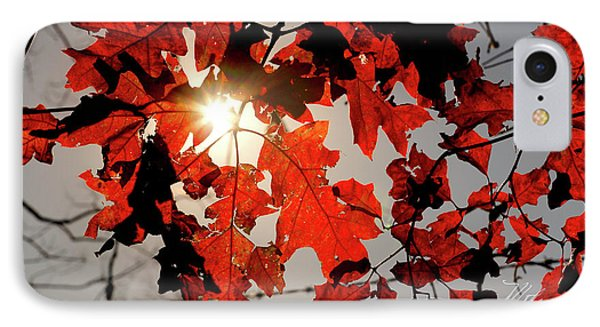 IPhone Case featuring the photograph Red Fall Leaves by Meta Gatschenberger