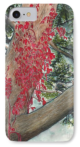Red Fall Vines On Big Old Tree IPhone Case by Conni Schaftenaar