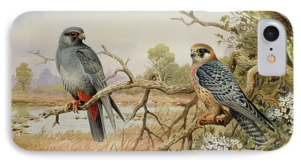 Red-footed Falcons IPhone Case by Carl Donner
