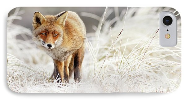 Red Fox In A Winter Landscape IPhone Case by Roeselien Raimond