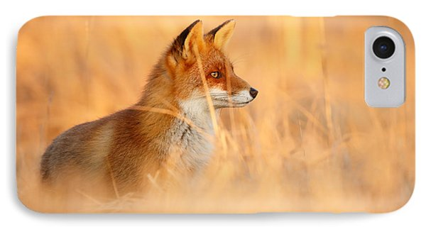 Red Fox In Red Light IPhone Case by Roeselien Raimond