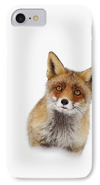 Red Fox In The Snow Portrait IPhone Case
