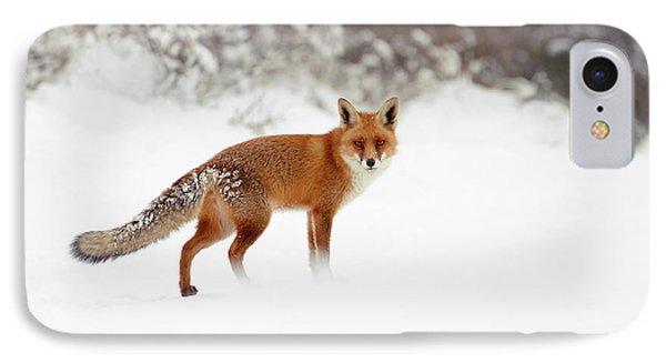 Red Fox In Winter Wonderland IPhone Case