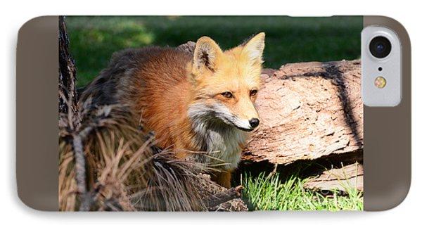 Red Fox On Patrol IPhone Case by Debby Pueschel