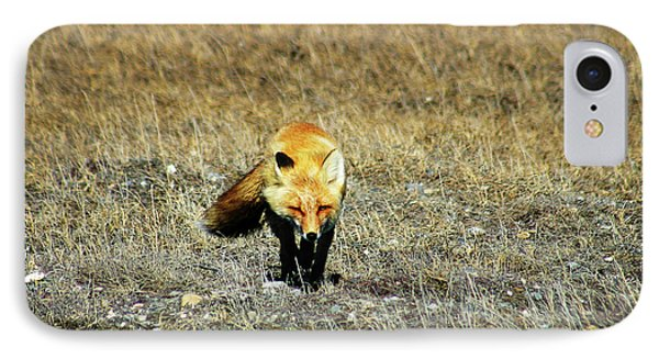 IPhone Case featuring the photograph Red Fox On The Tundra by Anthony Jones