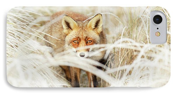 Red Fox Out Of The White IPhone Case