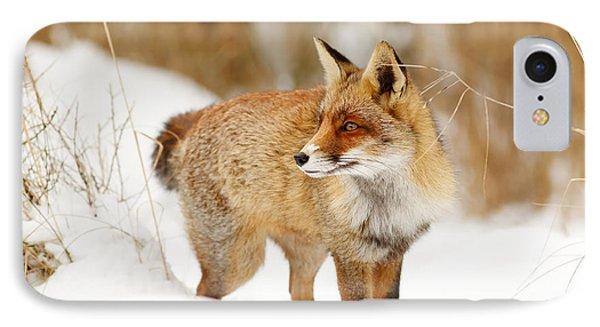 Red Fox Standing In The Snow IPhone Case by Roeselien Raimond