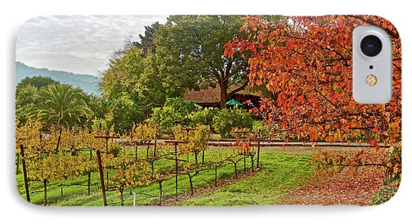 Red, Gold And Green In Yountville Vineyard In Napa Valley-california  IPhone Case by Ruth Hager