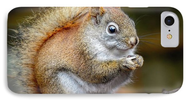 Red Ground Squirrel IPhone Case