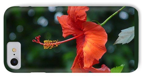 Red Hibiscus IPhone Case by Valerie Ornstein