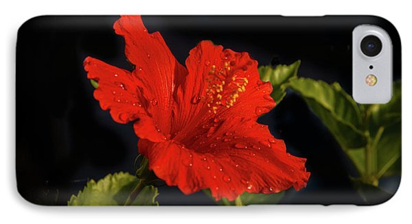 Red Hibiscus With Water Drops IPhone Case by Robert Bales