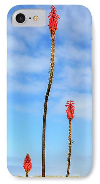 IPhone Case featuring the photograph Red Hot Pokers by James Eddy